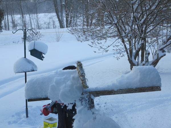 Blowing Snow012