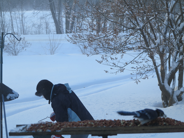 Blowing Snow014