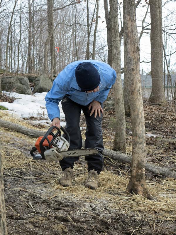 Lumber Jane04