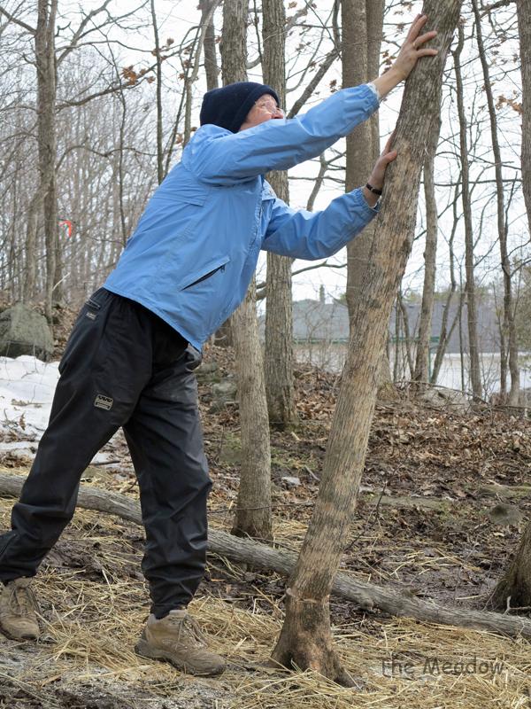 Lumber Jane06