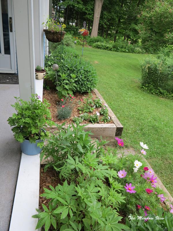 June 14 Gardens15