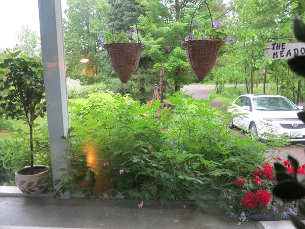 Rainy Day2