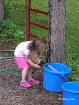 I'll fill the water buckets!