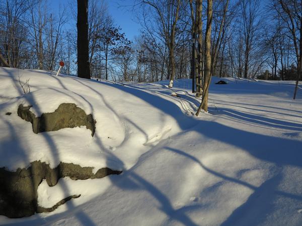 Snowy Day Antics003