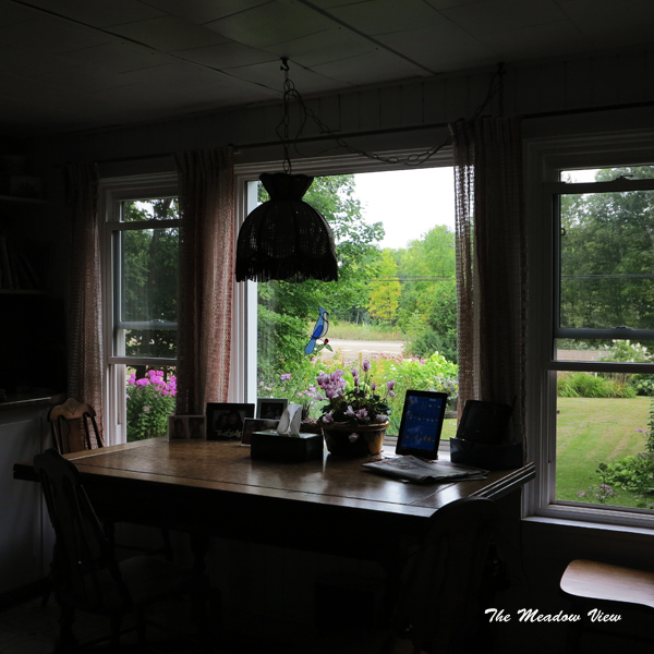 Kitchen Windows1