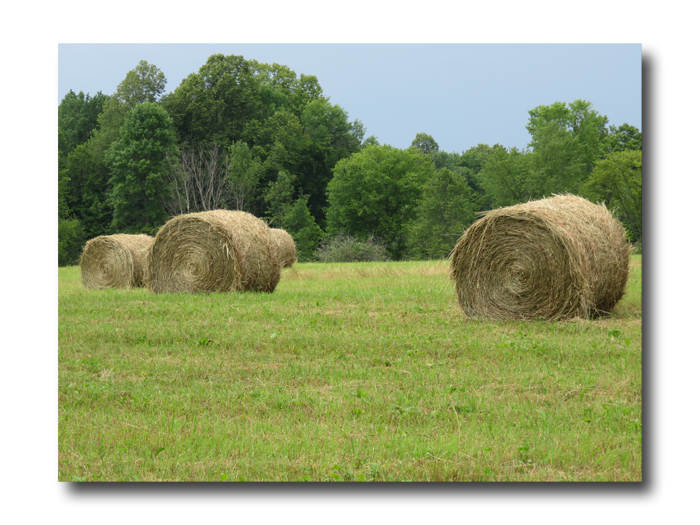Bales Are Done01
