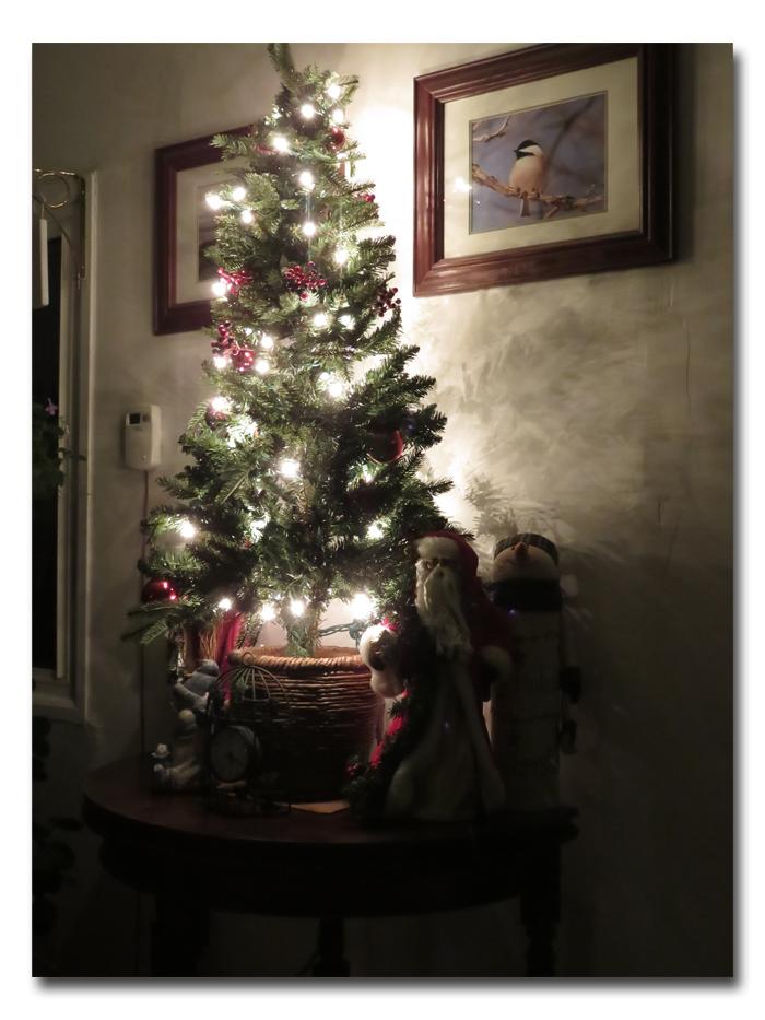 O Christmas Tree002