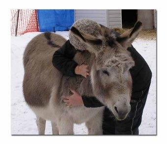 Paco hugs ... were the best