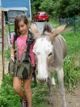Kyla begins learning how to train the donkeys