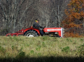 Randy, our hay man, was out tilling the lower field.