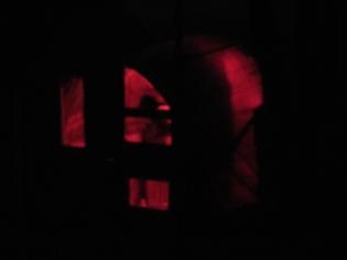 Guinea coop night glow.