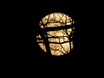 Super moon is rising