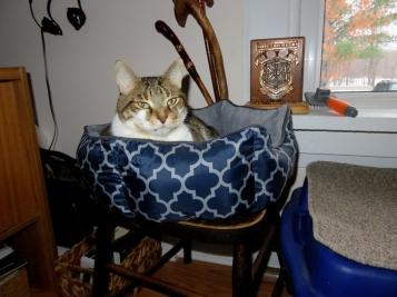 Ru's snuggle nest.