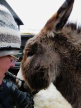 When you scratch a donkey's back ...