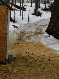 ... of wood chips and manure appears!