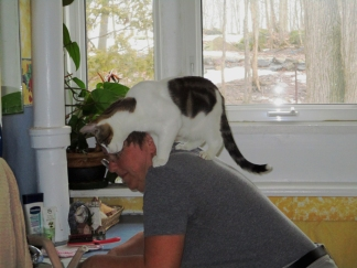 Notice ... he is not on the counter ... and he is not in the sink. Ha!