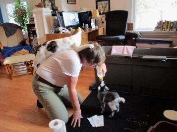 Oz takes his job as supervisor very seriously.