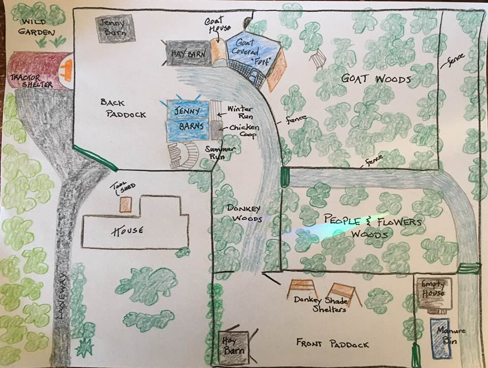 Meadow Critter Map