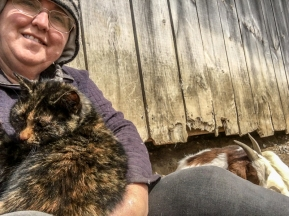 Oh those barn cats! SOOO CUDDLY!